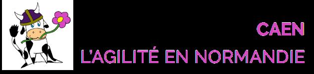 Club Agile Caen