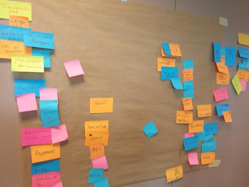 Classement 1 : Regroupement des idées ayant un rapport entre elles.